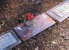 moles grave markers 1