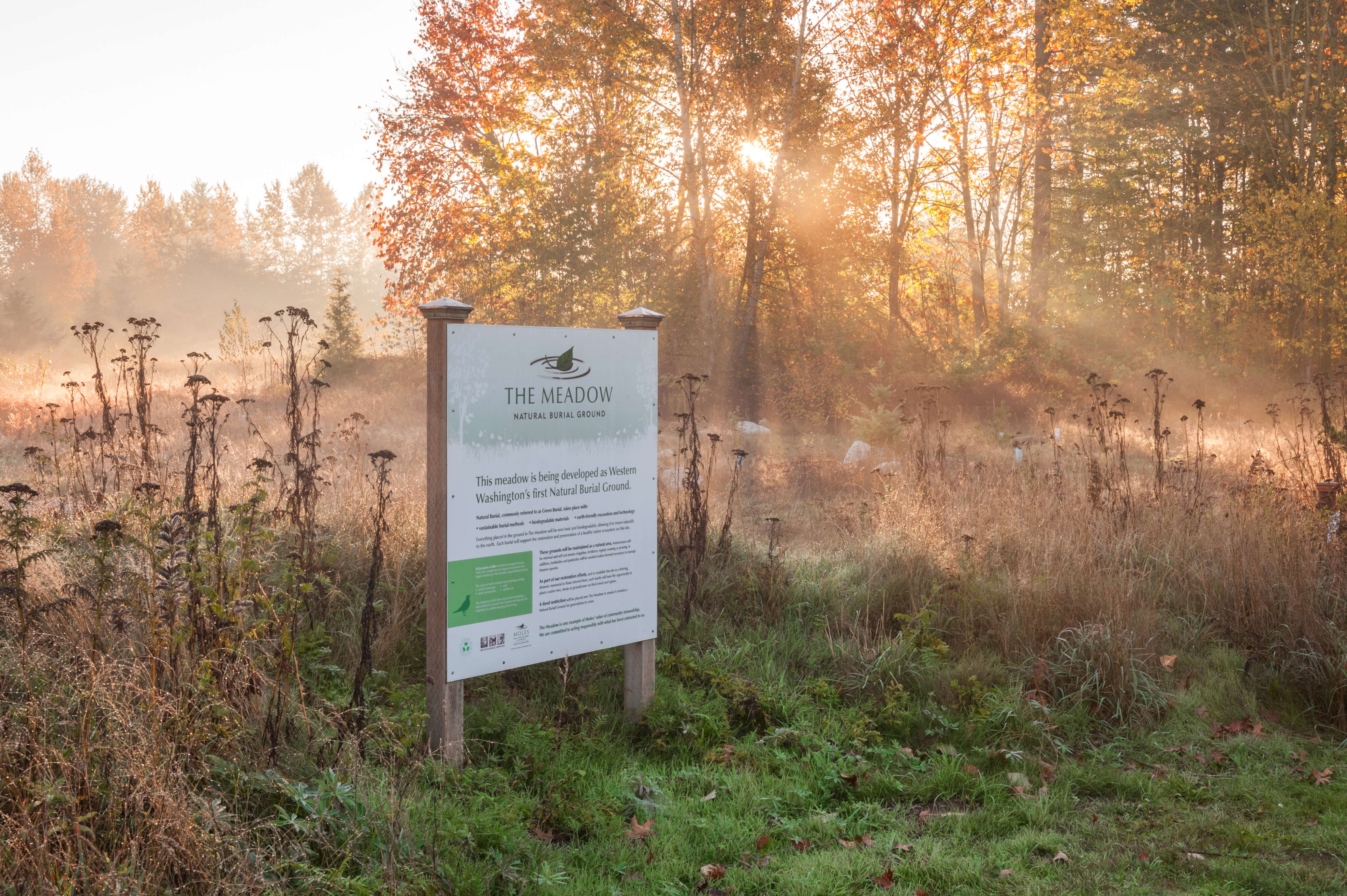 The Meadow natural burial grounds