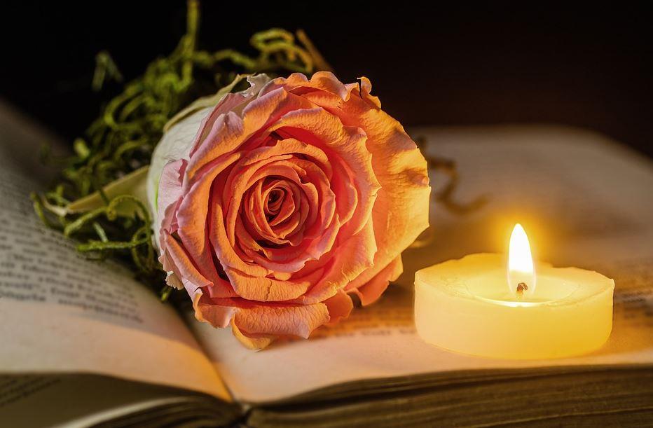 Bellingham cremation service