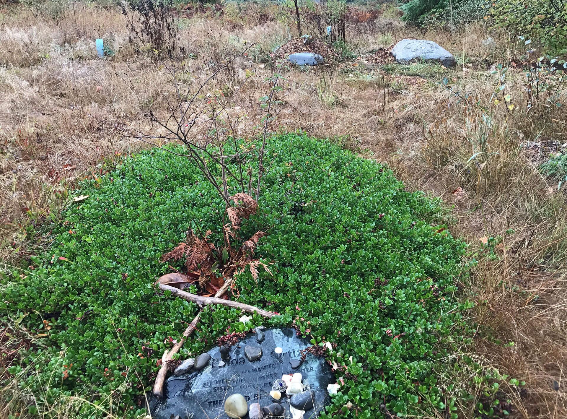 Meadows 3 Ortiz stone2