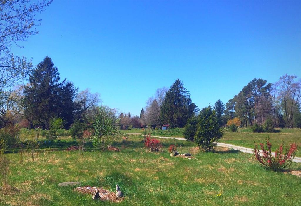 green burial at the meadow in greenacres memorial park 1024x701