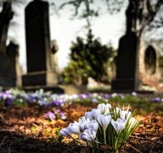 cremation Bellingham WA 1 320x300