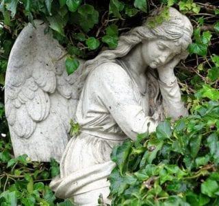 cremation service Bellingham, WA